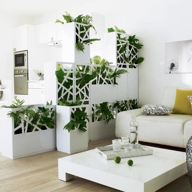 Garden room divider for small spaces and studio apartments