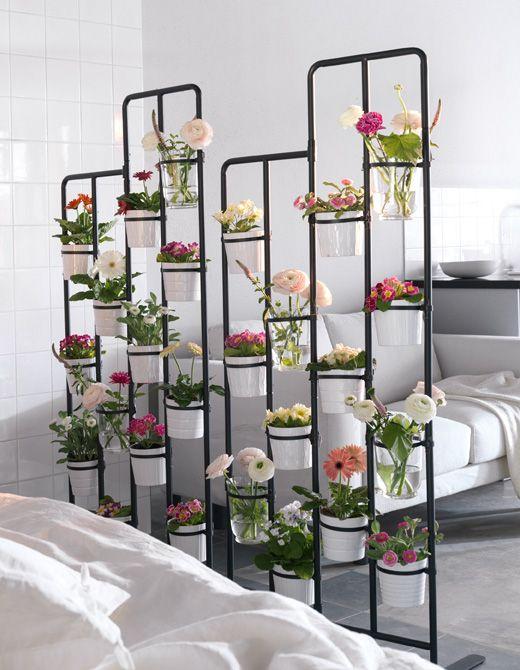 Indoor garden room divider for small studio apartment