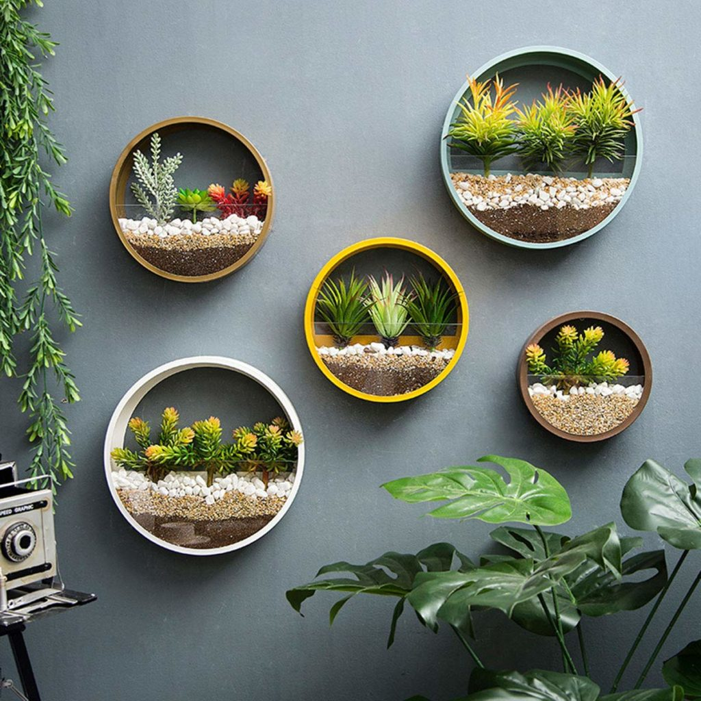 modern circle wall vase succulent planters Amazon