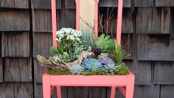 succulent chair planter