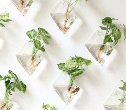 indoor garden ideas for small apartments
