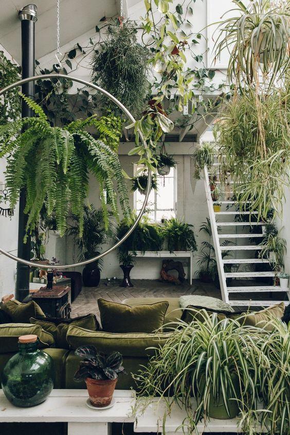 maximalist interior design in small spaces using plants