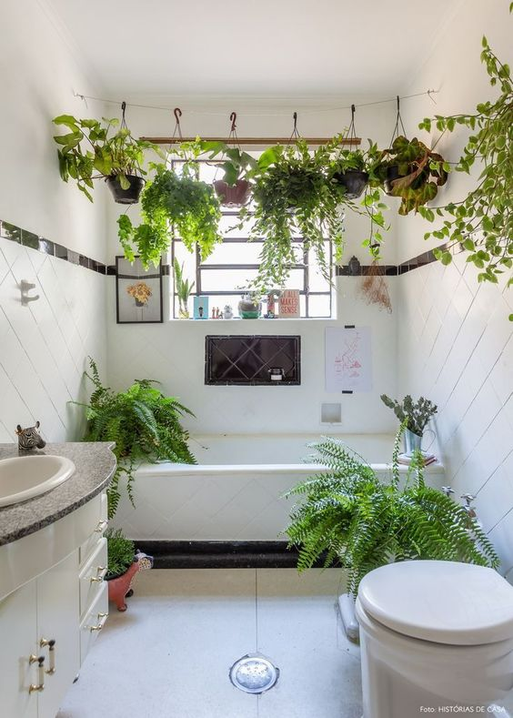 small white bathroom with plants