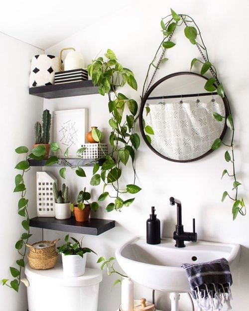 small white bathroom decorated with pothos plants