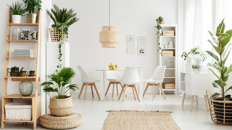 white and wood natural dining room decor