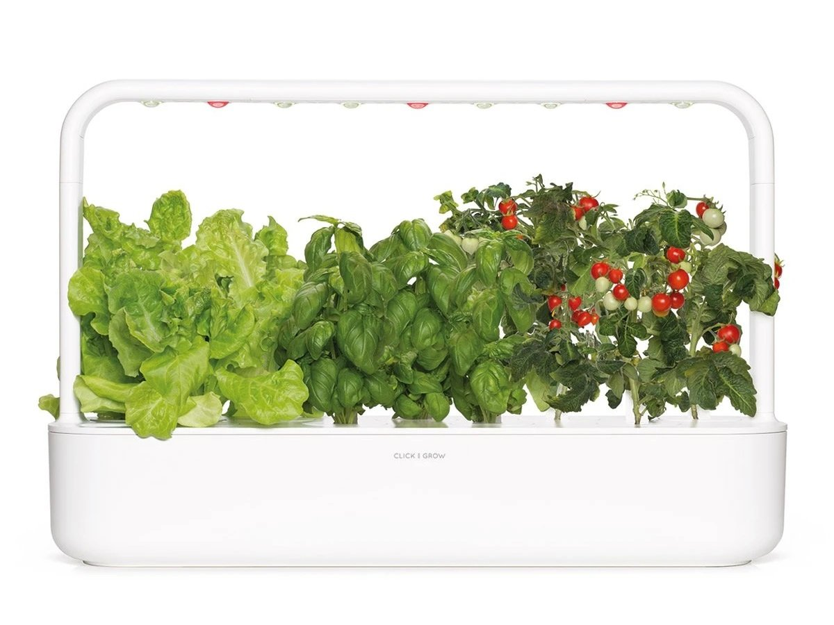 click and grow smart garden as a gift.