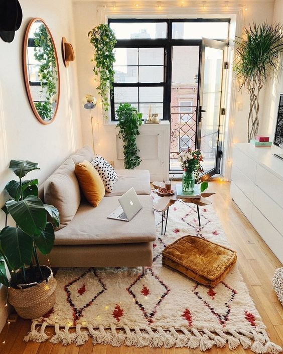 bright small apartment living room decorated with plants