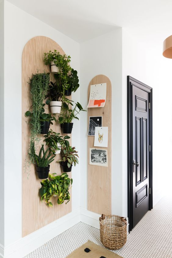 color blocking plant shelf